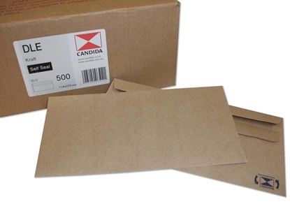 Picture of 6512 Dle Banker Self Seal Envelopes Manilla Box500 114X225mm